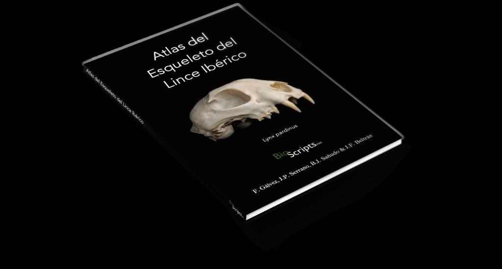 Atlas del Esqueleto del Lince Ibérico